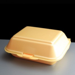Foam Burger Box HP2 (125)